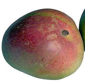 Crumble de Manzana y Moras