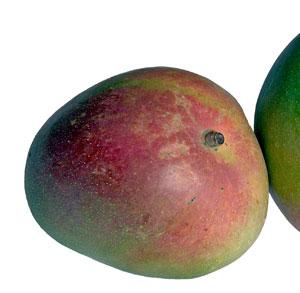 receta gratis batido mango