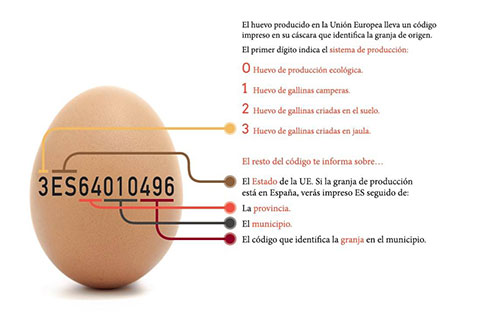 como leer etiquetas huevos